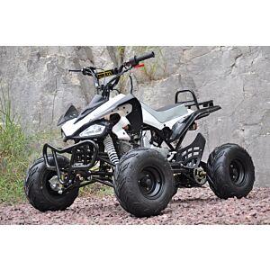 Outback 110 cc quad med back