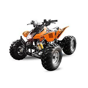 Grizzly 125cc sports quad