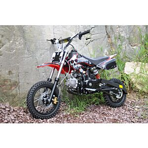 110 CC halv automat motocross med elstart och döskalle design